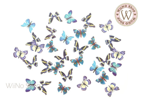 Butterfly Nail Art Sequin Decoration (B05)