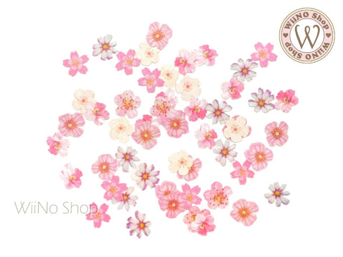 Cherry Blossom Flower Nail Art Sequin Decoration (F04)