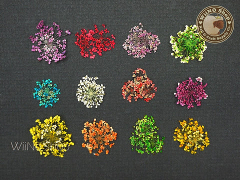 Dried Flower Nail Art Decoration - 1 set