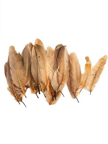 Craft Feathers Brown