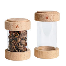 Load image into Gallery viewer, Clear Wooden Treasure Tubes