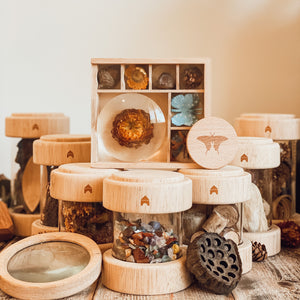 Clear Wooden Treasure Tubes