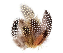 Load image into Gallery viewer, Guinea Fowl Feathers Natural