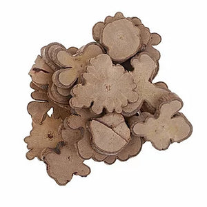 WYLTP Natural Irregular Wood Slices