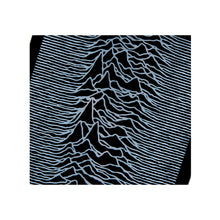 Load image into Gallery viewer, SKATEBOARD DECK Joy Division Sync. 'Unknown Pleasures'