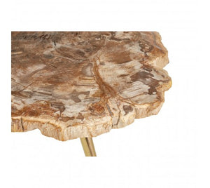 Premier Housewares Relic Petrified Wood Coffee Table