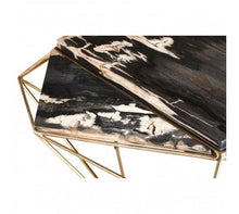 Load image into Gallery viewer, Premier Housewares Relic Dark Petrified Wood Coffee Table