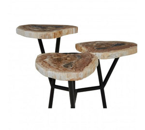 Premier Housewares Relic Side Table With Petrified Wood Top