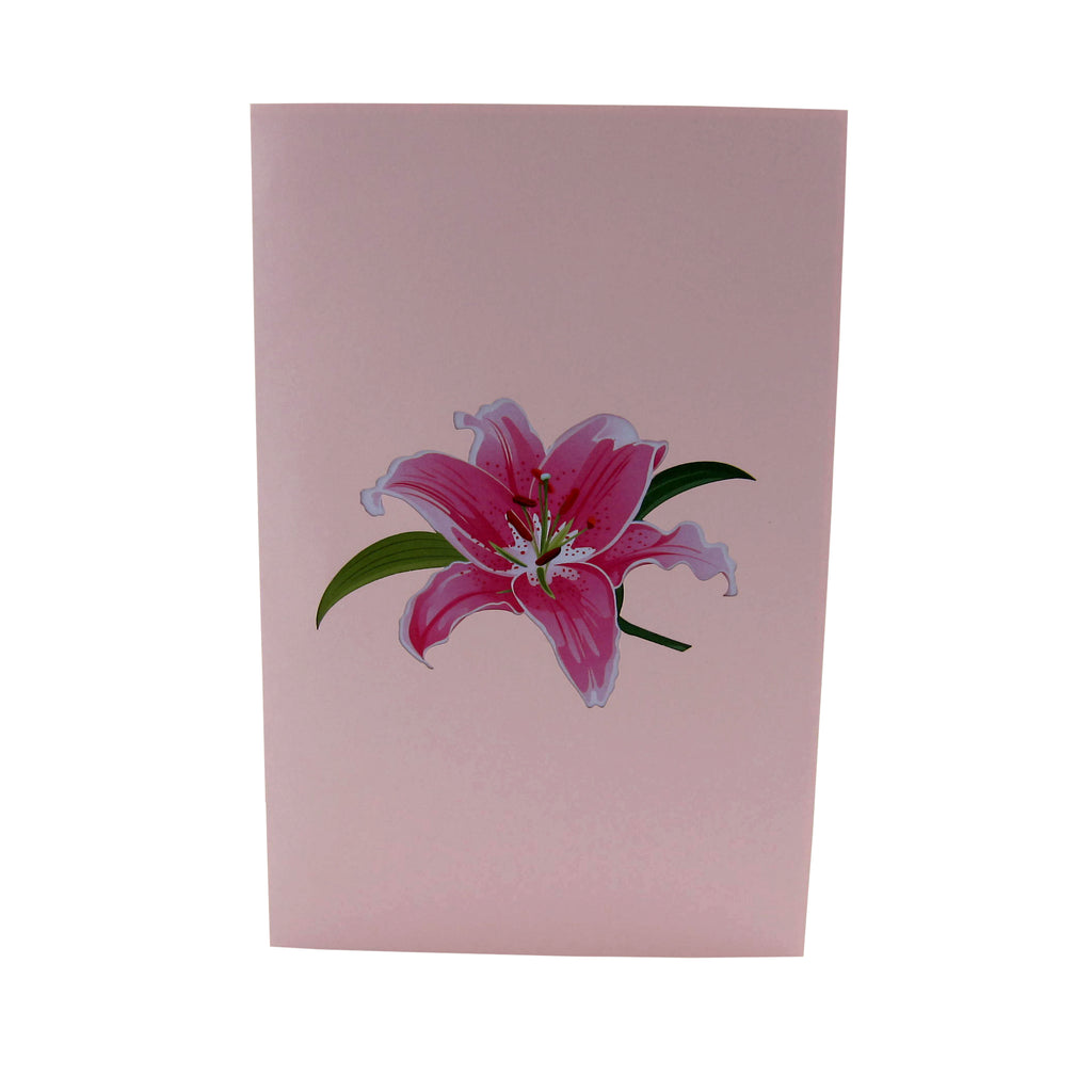 LovelyPinkLilyFlower3dGreetingCard-Cover