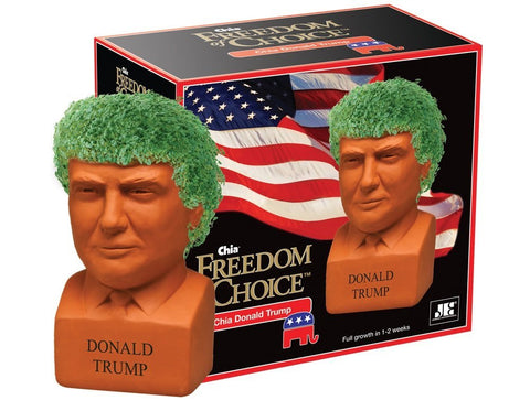 Chia Pet Donald Trump, Decorative Pottery Planter, Freedom Choice