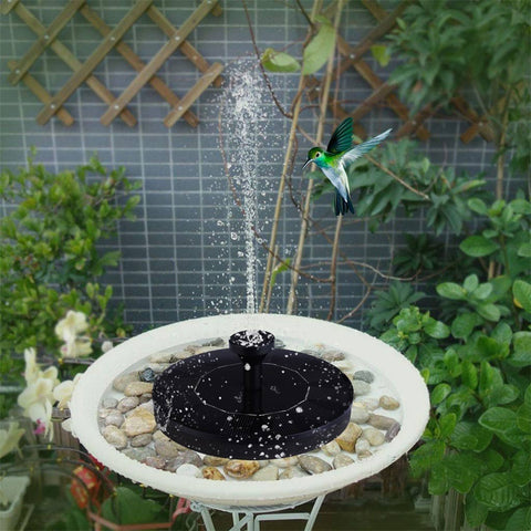 Solar-Powered Bird Fountain Kit