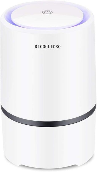 RIGOGLIOSO Air Purifier for Home Smokers Allergies and Pets Hair,HEPA Filters 5v USB cable Low Noise with Night Light GL2103