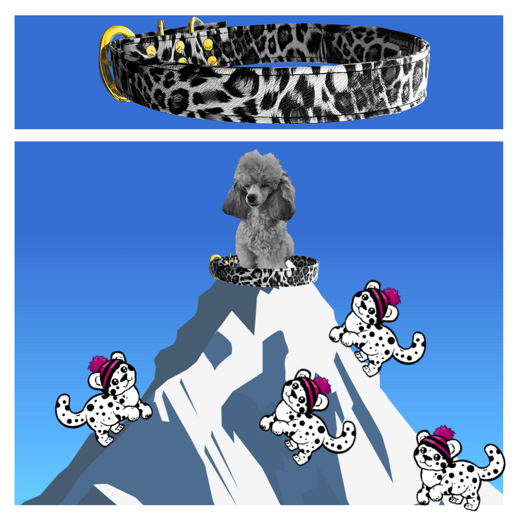Xenas Wardrobe Personalised Collars Snow Leopard