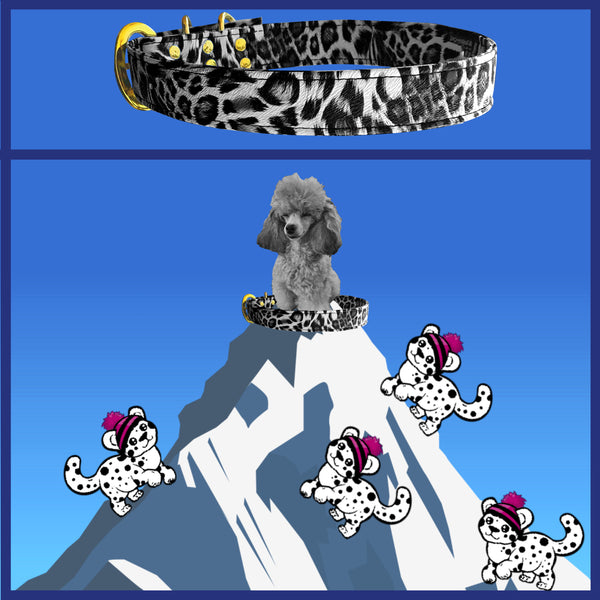 Personalised Pet Collar Snow Leopard