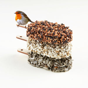 Studio Carmela Bogman | Desserts for Birds Double Delicious
