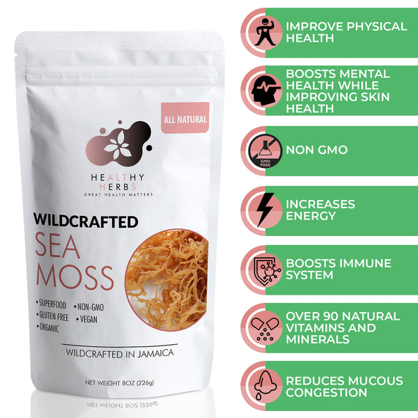Sea moss wildcrafted 100% organic Jamaican seamoss irish moss seaweed is naturally grown along the shorelines of Jamaica and St. Lucia as well as the Atlantic shorelines of Europe and North America.