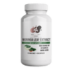 Healthy Herbs | All Natural Moringa Leaf Extract (400mg)