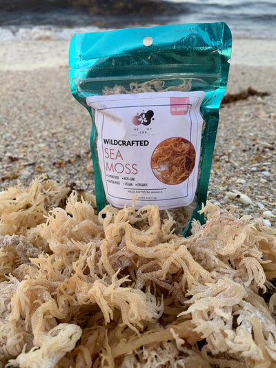 Our sea moss is Jamaican wildcrafted (naturally grown) seamoss also known as irish moss or seamoss seaweed harvested along the shorelines of Jamaica and St. Lucia. Sea moss is known to contain 92 essential health minerals that the body uses