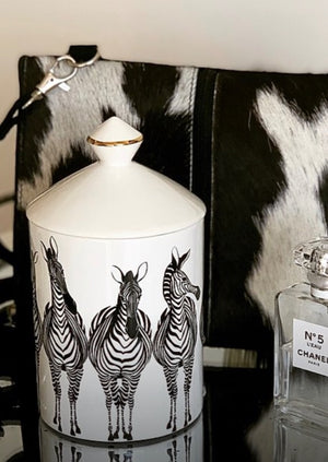 Miss Zebra Candle