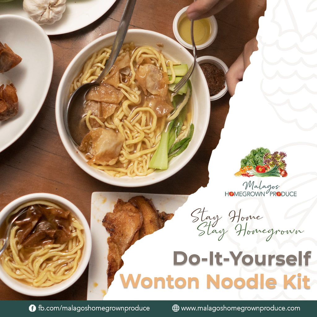 Special Wanton Noodle Meal Kit