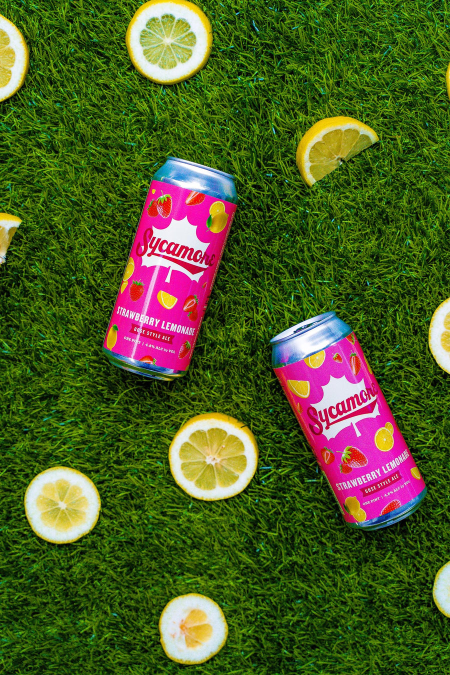 Strawberry Lemonade Gose (8-pack)