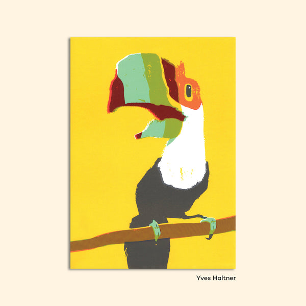"Postcard ""Toucan"" by Yves Haltner"