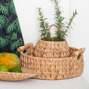 Annabel Trends - Round Basket – Water Hyacinth