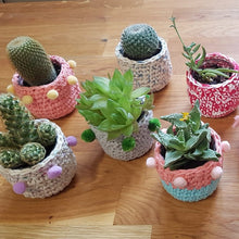 Load image into Gallery viewer, Mini Crochet Planter Pot Class