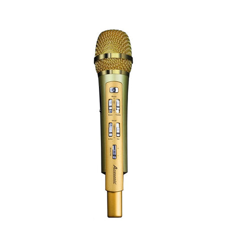 RadioStar Microphone with Bluetooth Mixing & FM Transmitter