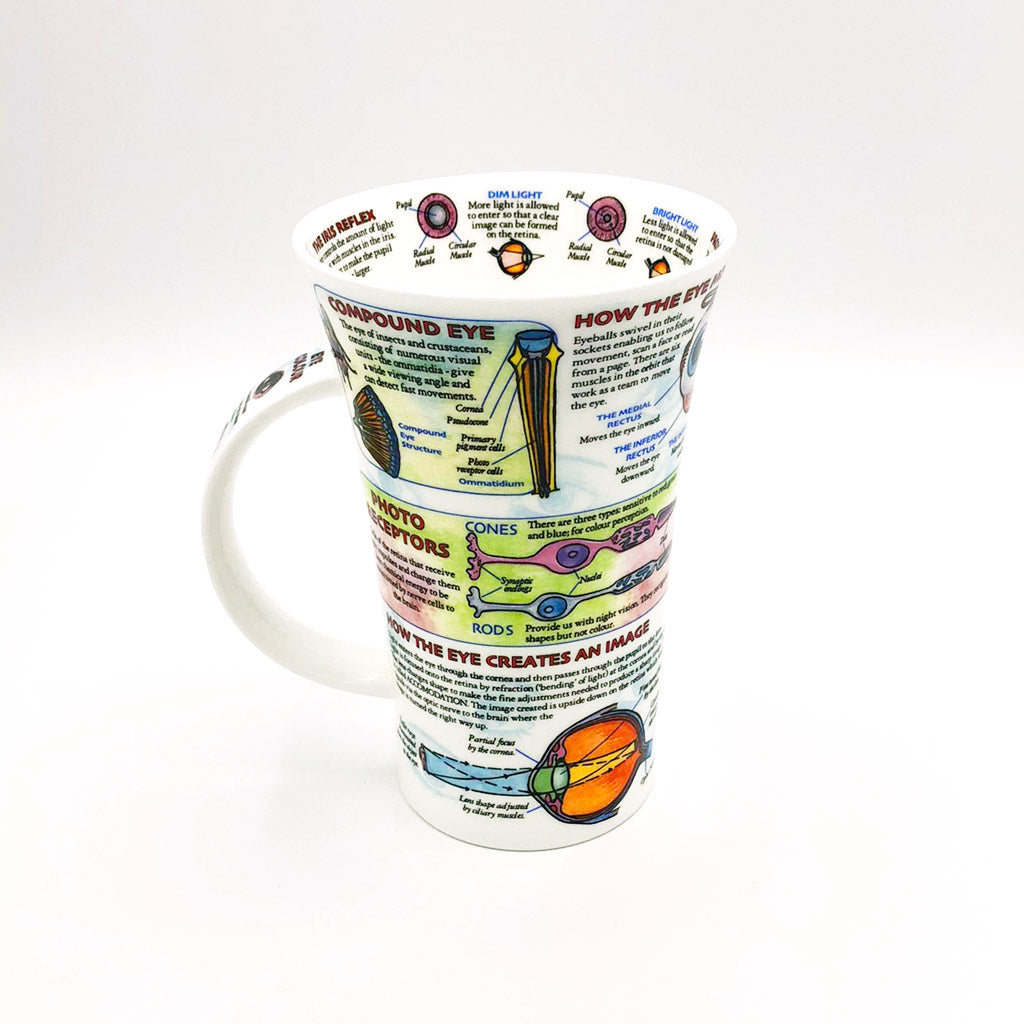 dunnoon eye fine bone china mug at lambertville trading company