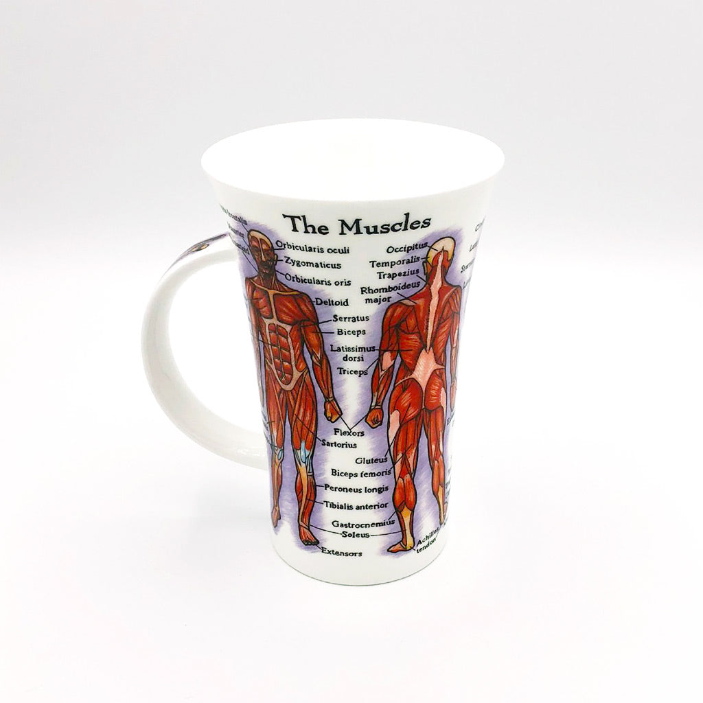 dunnoon human body fine bone china mug at lambertville trading company