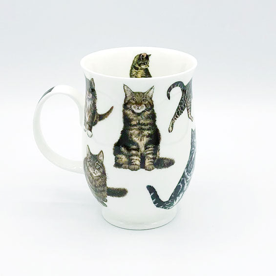 dunnoon tabby cats fine bone china mug at lambertville trading company