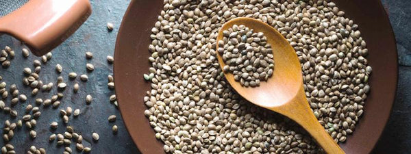 The Benefits of Hemp Seeds and Hemp Seed Oil | Vital Pharmacy Supplies