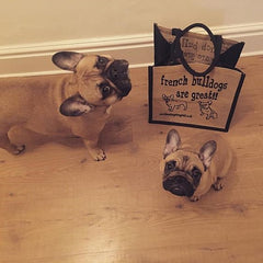 Frenchie great shopping bag