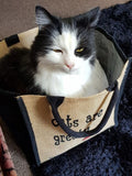 Cats are Great Bag