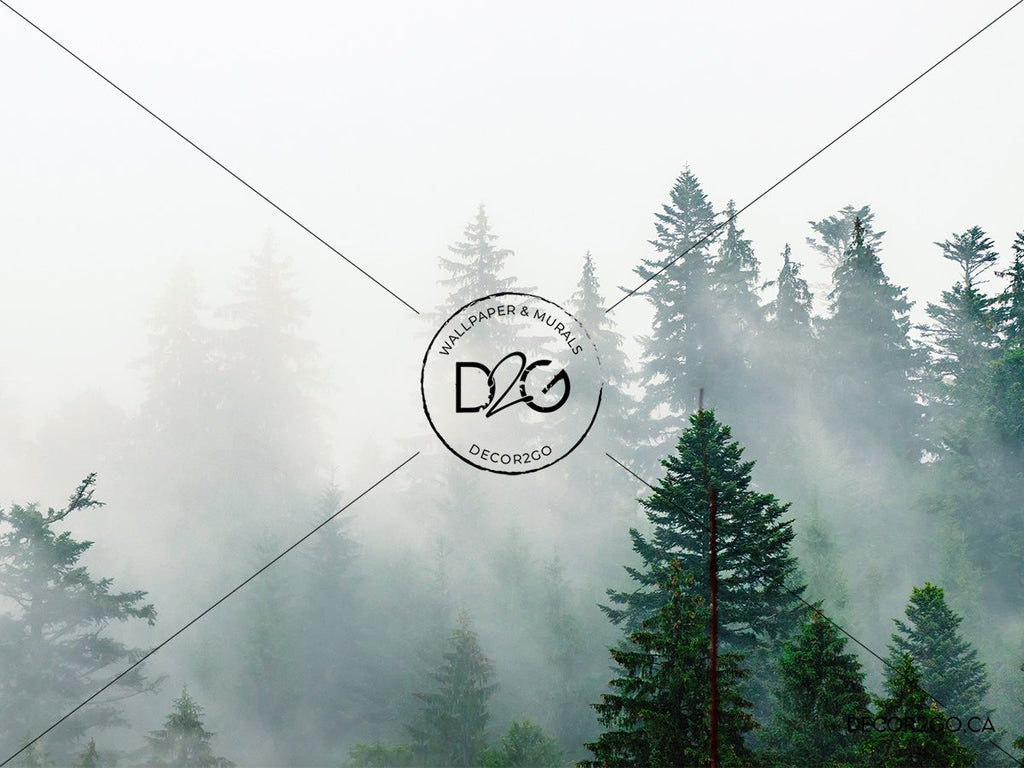 Landscape, Foggy, Mural, Wallpaper