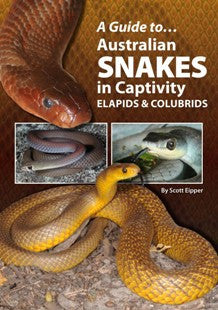 A Guide to... Australian Snakes in Captivity - Elapids & Colubrids