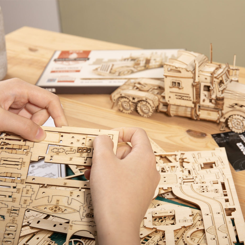 Mechanical Wooden DIY Toy Project Idea Anavrin