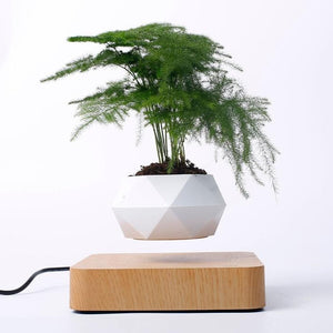 Magnetic Balance Levitating Plant Pot | Sweet Home