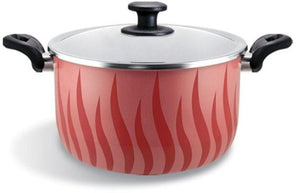 Tefal Tempo Stew Pot 22 Non Stick