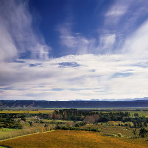 Little Beauty Single Vineyard Marlborough New Zealand.  Producing charming small production aromatic varietals.