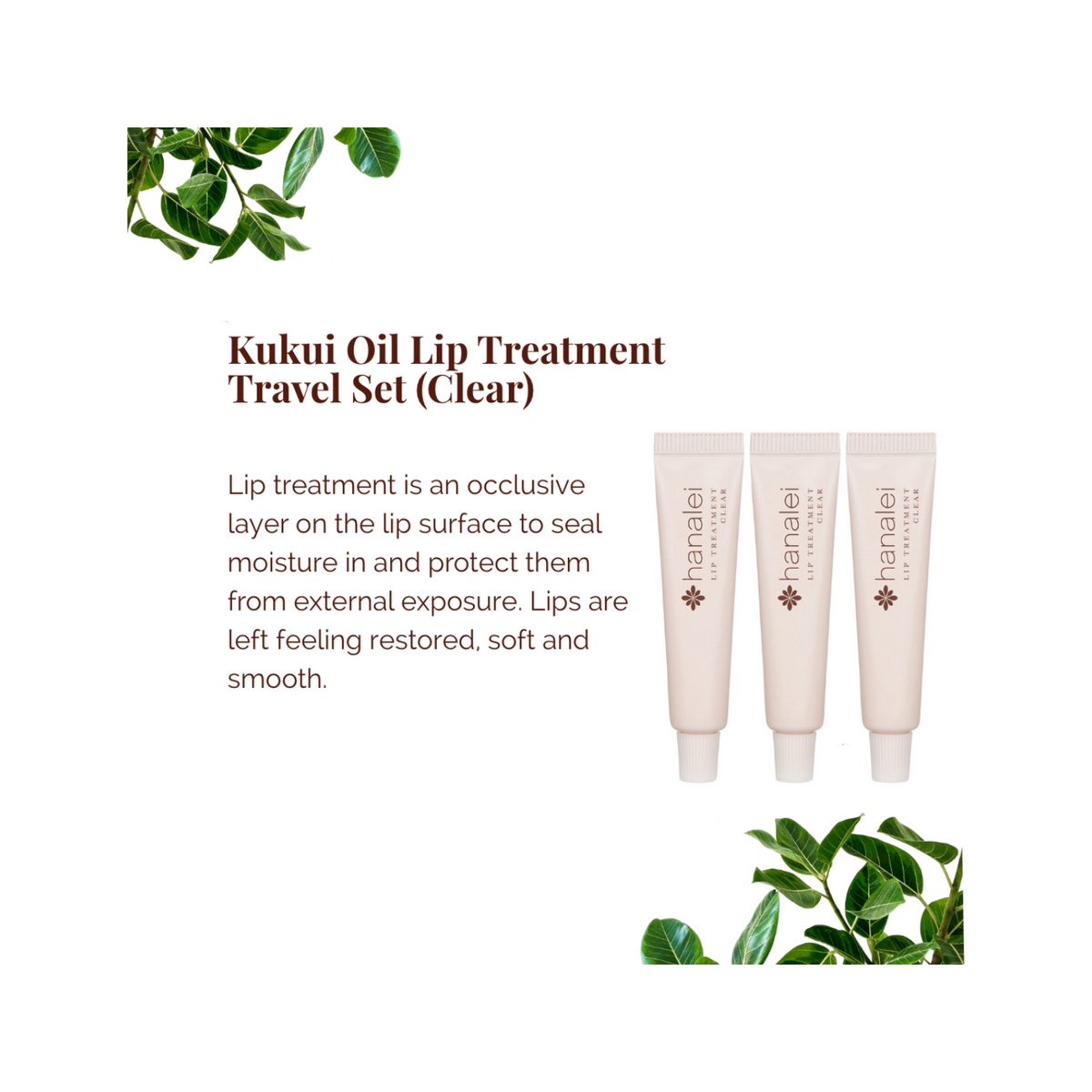 Kukui Oil Lip Treatment (Clear)