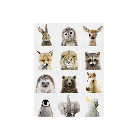 Animal Family (Double Sided) Wall Art