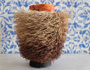 Date Palm Ombre Basket - Christine Adcock