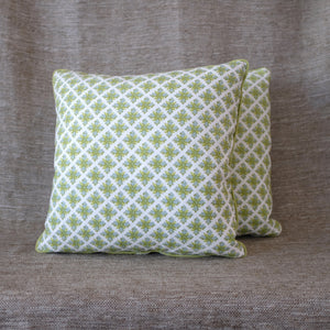 Pair of Granada Robin's Egg Pillows