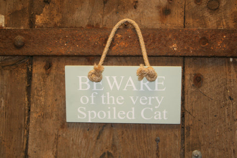 Beware Spoiled Cat
