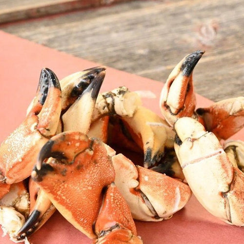 Jonah Crab Claw & Arm Case Lot-finsathome