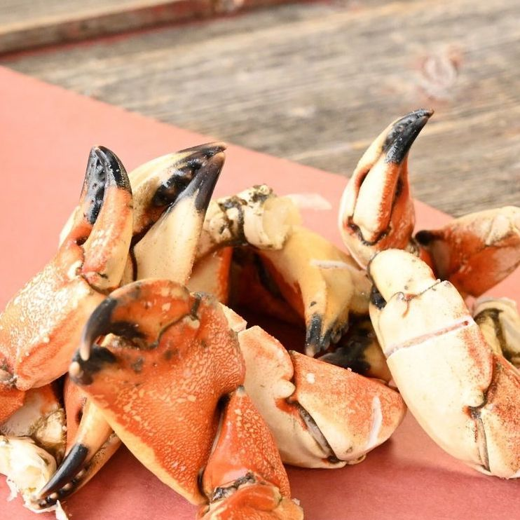 Jonah Crab Claws 1LB or 10LB Case-finsathome