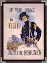 If You Want To Fight Join The Marines