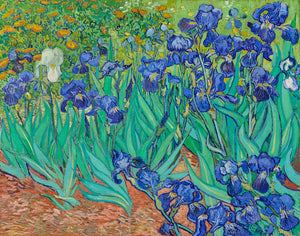 Irises 1889 by Vincent Van Gogh